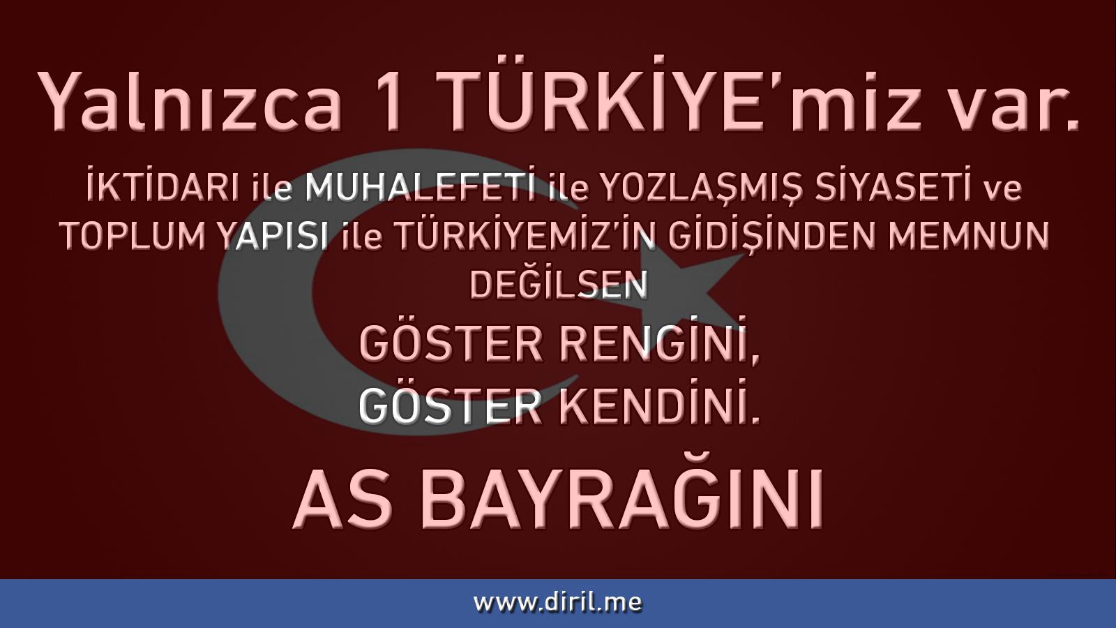 2013-04-27_BayrakAS_2