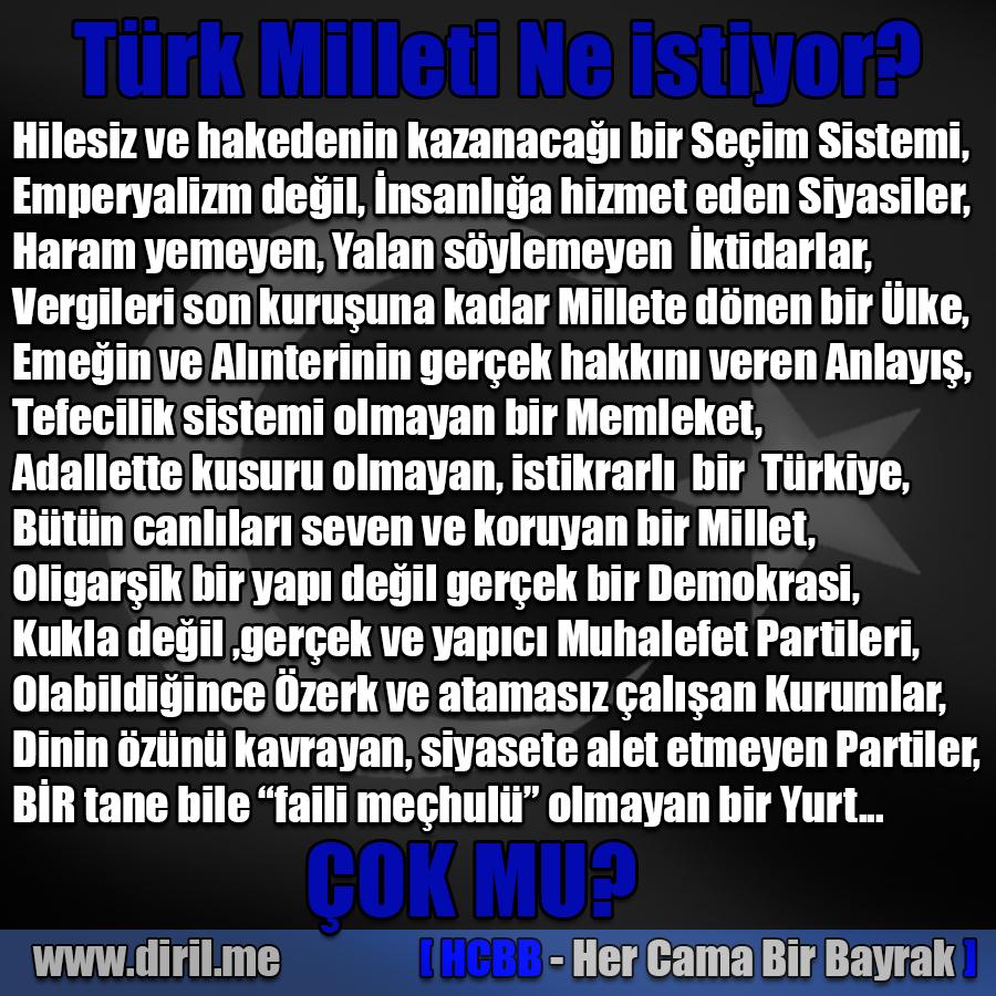 Türk Milleti ne İstiyor?