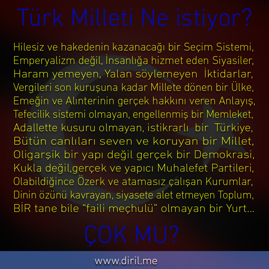 2013-06-15_TürkMilletiNeİstiyor1_900x900